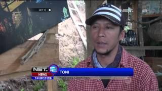 Wisata Hutan Pinus di Jawa Timur Menarik Wisatawan - NET12