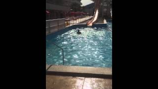 Water slides at BH Mallorca