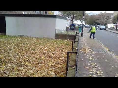 Tupai & Burung gagak at Bermondsey