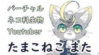 たまこねこまたの動画「【自己紹介】ネコ科Vtuberのたまこねこまたです【バーチャルYouTuber】」のサムネイル画像