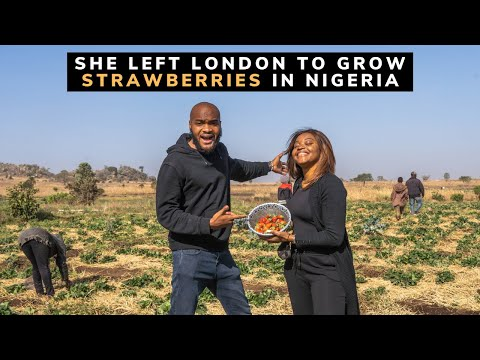 She left the UK to be a Strawberry Farmer in Nigeria.