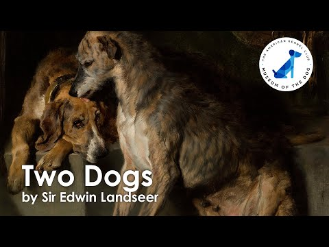 Two Dogs by Sir Edwin Landseer - AKC Museum of the Dog