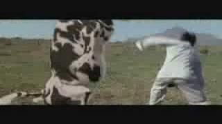 !!SUPER FUNNY!! Pixar   Karate Cow   Kung Pow
