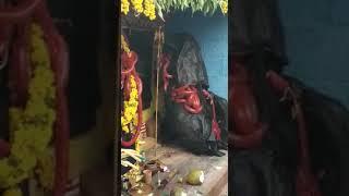 Vellore katteri entry in old Town mayanakollai Thumb