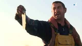 Depuis plus de 50 ans, la famille Ramagosa pêche à Saint Cyprien, près de Perpignan