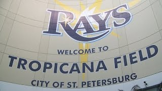 Can The Rays Survive In Tampa Bay?