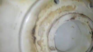 336: A look @ two nonfunctional J.L. Mott Silentis toilets.
