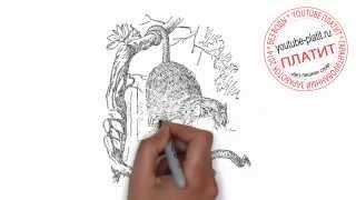 Как нарисовать бешеную белку(Как нарисовать поэтапно карандашом за короткий промежуток времени понравившегося персонажа или предмет...., 2014-06-29T08:17:28.000Z)