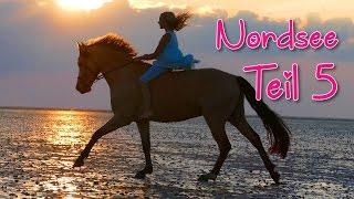 Lia & Alfi - Mit Pony in den Urlaub - FMA [Teil5]
