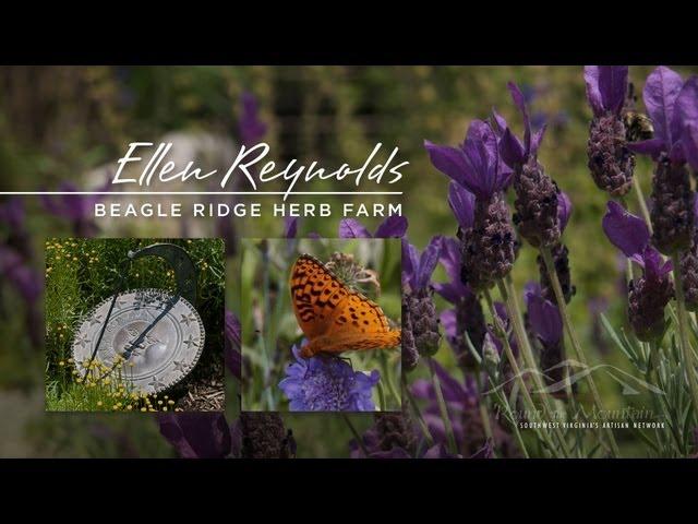 Ellen Reynolds