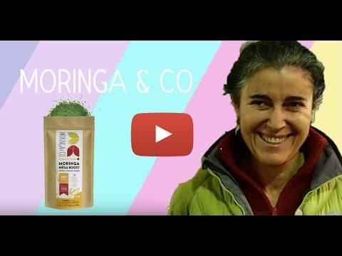 Moringa & Co - Complément alimentaire végan riche en protéines
