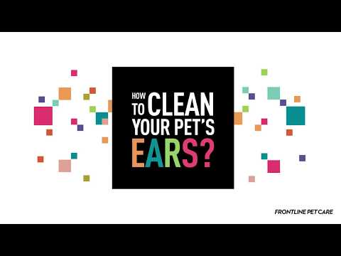 FRONTLINE - How to Clean Your Pet's Ears?