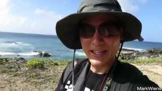 Kaena Point Hike & Food in Haleiwa, Hawaii