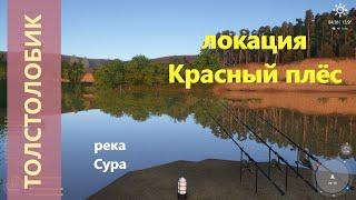 Русская рыбалка 4 - река Сура - Толстолобик у лагеря
