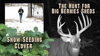 Booner Shed Antlers & Tips For Better Clover Food Plots (#225) @GrowingDeer.tv