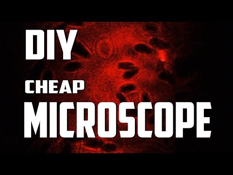 Make ultra cheap MICROSCOPE for less than Rs.100 | DIY Microscope