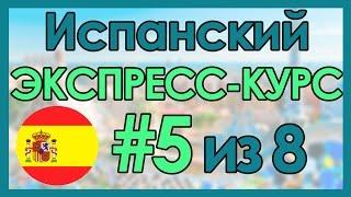 #5 Испанский: ЭКСПРЕСС-КУРС за 8 Уроков ║ Испанский Язык Для Начинающих
