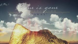 Gone Is Gone - Pawns