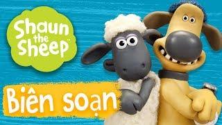 Biên soạn 9-12 [phần 5] - Những Chú Cừu Thông Minh [Shaun the Sheep Season 5 Compilation]