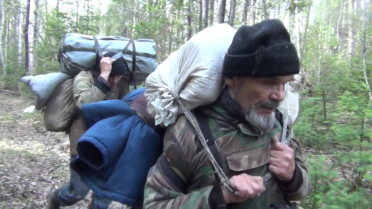How to survive in the taiga