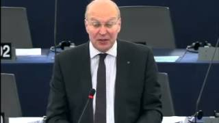 Andrew DUFF 11 Dec 2013 plenary speech on Preparations for the European Council meeting 19