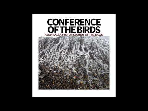 Conference Of The Birds – A Boxwalla Mix for Sounds Of The Dawn