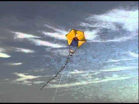 Windmill Kite By Flying Wings kites