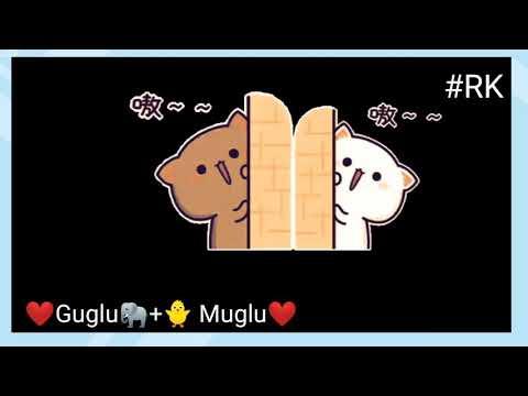 ❤️😊Guglu Muglu ❤️😊 cute couple Cat🐈 💞