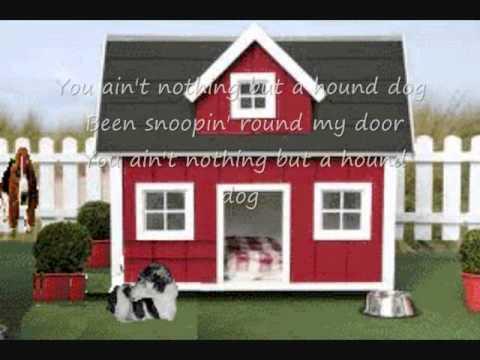Hound Dog - Willie Mae