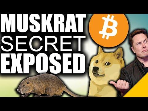 SECRET Crypto Plan EXPOSED (Elon Musk to DUMP Dogecoin for Bitcoin)