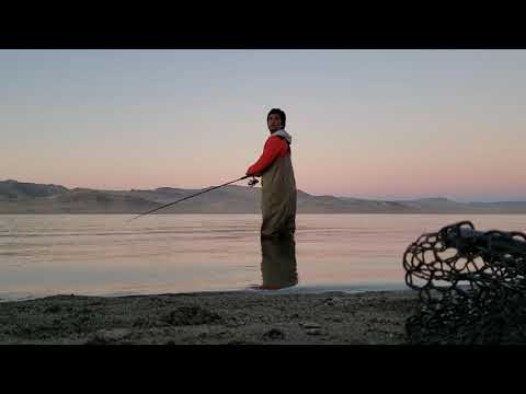 Pyramid Lake Fishing A Rapala For Lahontan Cutthroat Trout
