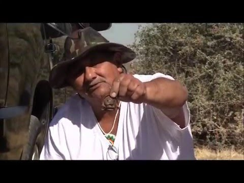 """Martin Malava Howato' Hopi Artist and Historian pt.2 (Ancient Hopi Village)"