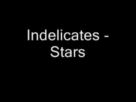 The Indelicates American Demo