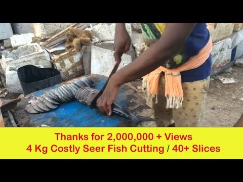 4KG (Rs. 2,500) Costly Seer Fish (Vanjaram ) Cleaning In India
