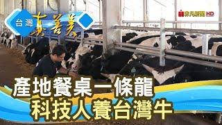 """有產銷履歷的""""台灣牛""""【台灣真善美】2019.08.04"""