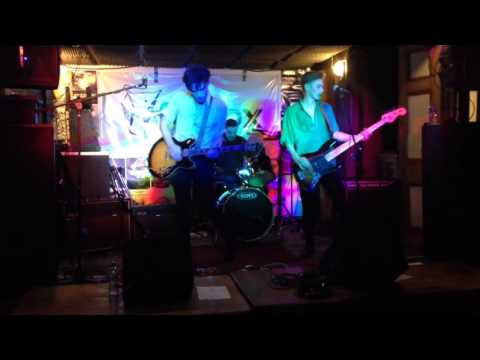 NOVELLAS - LIONESS @ THE FAT FOX 27th November 2015