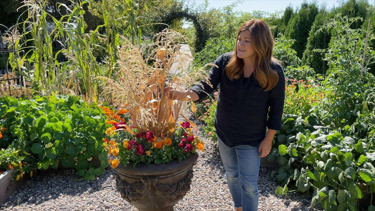 Download Planting 5 More Fall Containers! 🍂 // Garden Answer