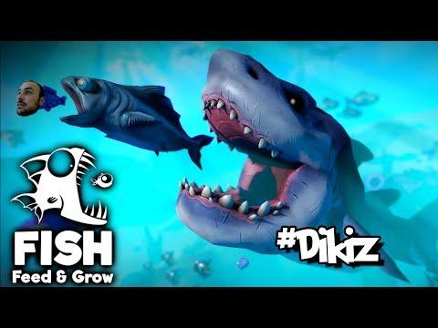 Yiyip Yiyip Büyüyen Balık - Feed & Grow The Fish # Dikiz