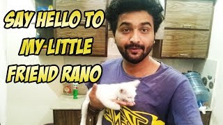 SAY HELLO TO MY LITTLE FRIEND RANO