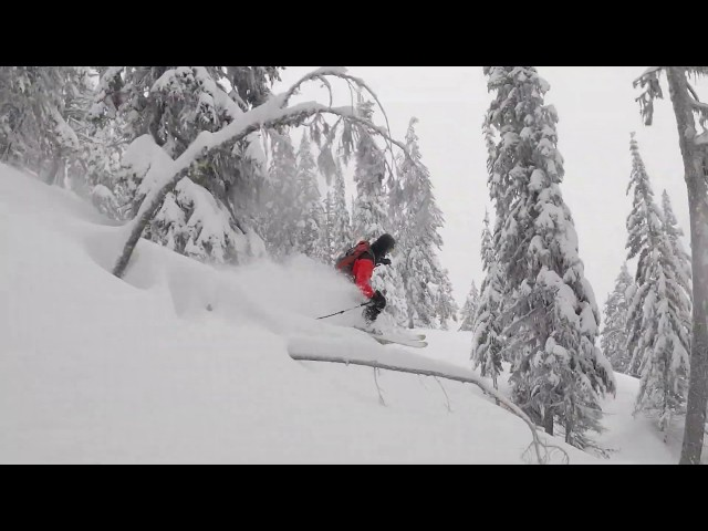 RED ATHLETE JEREMY HARVEY GOLDIE | January 2020 shRED