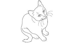 How to Draw a Cat / Как нарисовать кошку