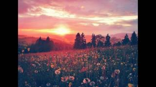 Please - Edward Sharpe and the Magnetic Zeros