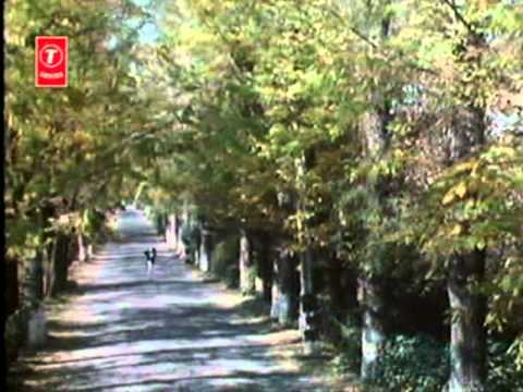 Din Patjhad Ke Hon Ya Baharein Ho (Full Song) Film - Bahaar Aane Tak