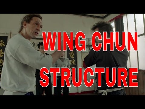 Wing Chun Principles of Structure