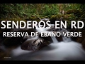 Seu Jorge-Mina do Condominio - YouTube
