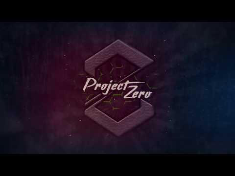 Project Zero | Puikkohitsausta vai puikkopilausta?