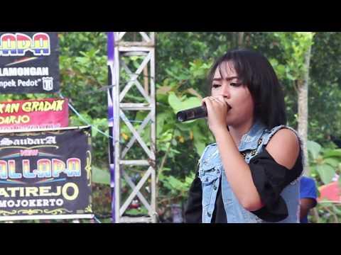 Banyu Langit  Voc  Hepy Asmara  NEW PALLAPA TENKGO 2018