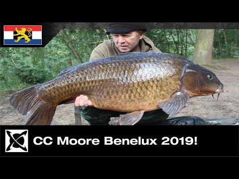 ***Carp Fishing*** Why CC Moore Go Carp Fishing*** Benelux