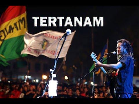 TERTANAM - TONY Q RASTAFARA - DRUM CAM