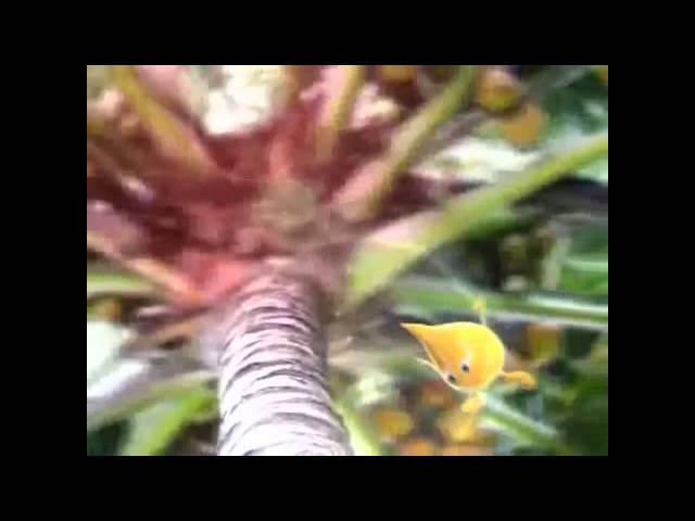 The Cholesterol Myths on Palm Oil (Mr Palmy)